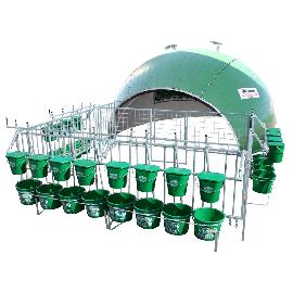 Niche 16 veaux igloo complète avec nouveau parc